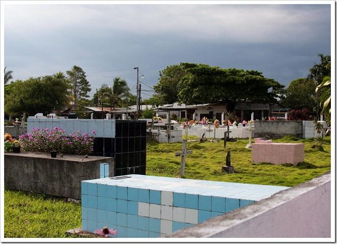 2010 March 15 Puerto Jimenez CR _-3