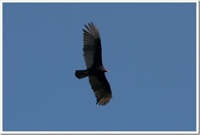2010 03 18 22 40 Costa Rica_