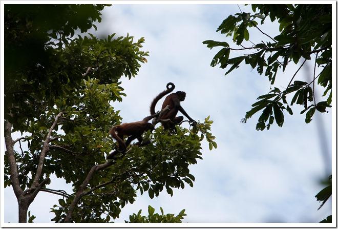 2010 03 18 19 12 Costa Rica_-12