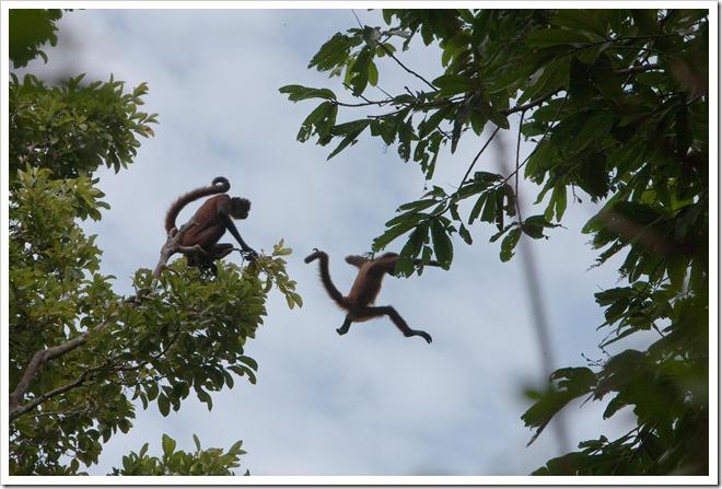 2010 03 18 19 12 Costa Rica_-13