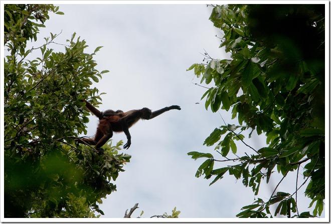 2010 03 18 19 13 Costa Rica_-3