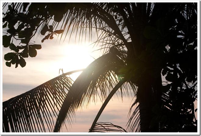 20100322 1310 Costa Rica