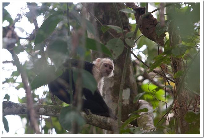 20100322 1838 Costa Rica