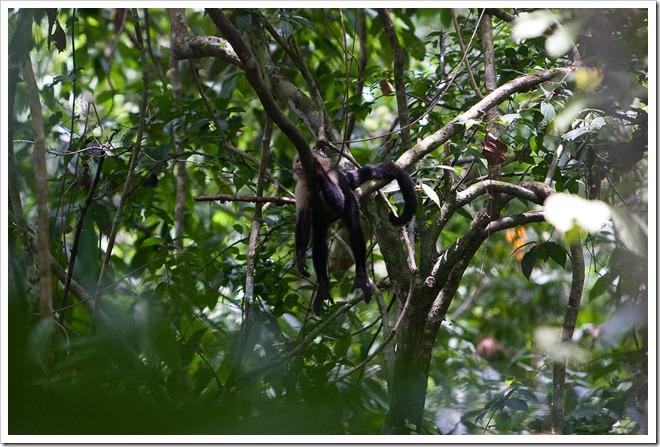 20100322 1841 Costa Rica