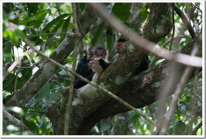 20100322 1843 Costa Rica-13