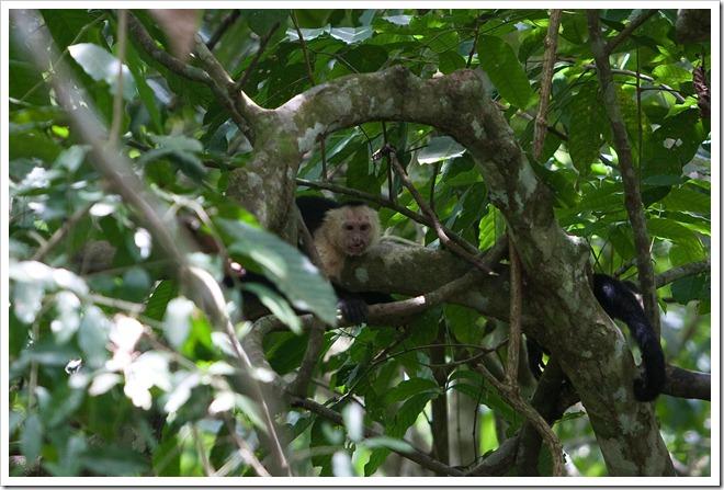 20100322 1844 Costa Rica-7