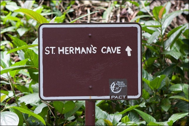 2011 03 19 St Hermans Cave_-1
