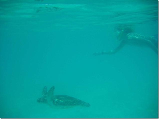 2011 08 19 Mexico  _