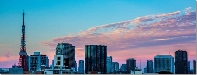 2012 08 14 Tokyo Skyline _-4