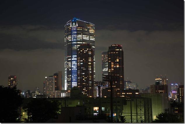2012 08 14 Tokyo Skyline _-6