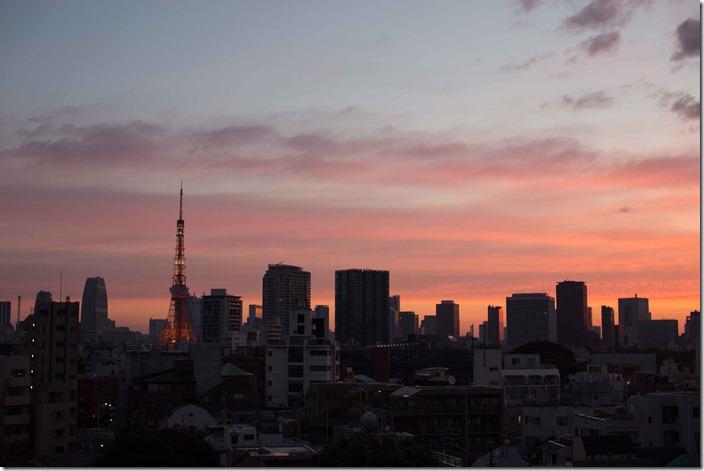 2012 10 30 Tokyo Skyline _-4