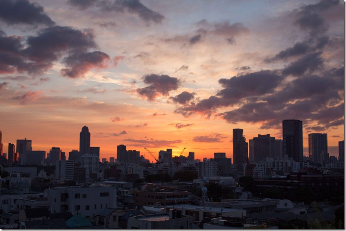 2012 10 30 Tokyo Skyline _-5