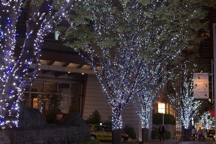 2012 11 13 Tokyo_-8