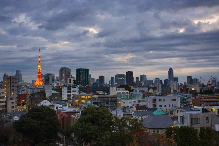 2012 11 19 Tokyo Skyline_-6