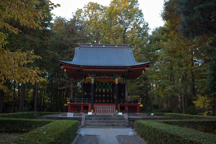 2012 11 24 Open Air museum_-3