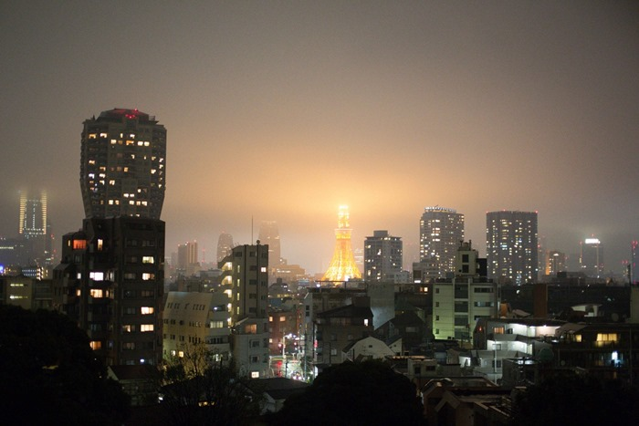 2012 10 28 Tokyo Skyline _-6