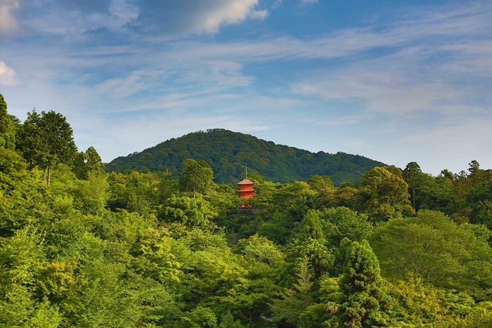 2013 06 17 Kiyomizu Temple _-41