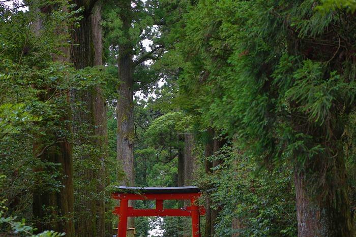 2013 07 20 Hakone Shrine_-20