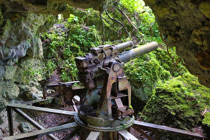2013 07 31 Peleliu Japanese artillery_-7