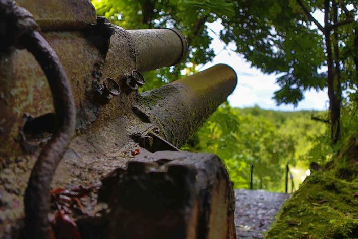 2013 07 31 Peleliu Japanese artillery_-8