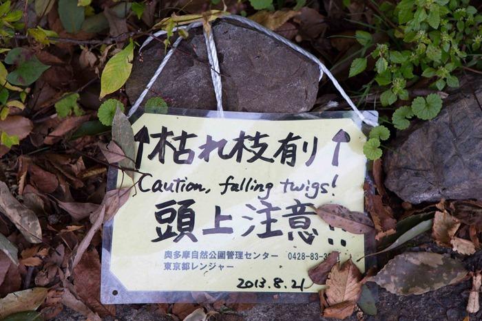 2013 11 03 Mt Mitake_-79