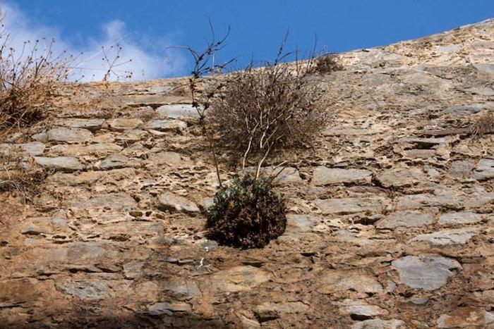 2008 Oct 23 Spinalonga Island Crete  (39)