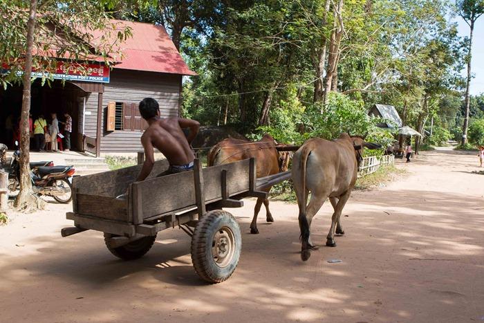 2013 11 25 Phnom Kulen_-90