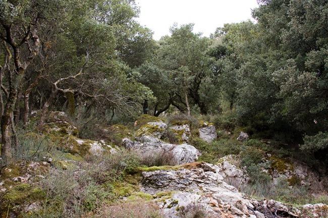 2008 Oct 24 Diktian Cave Crete (birthplace of Zeus)  (5)