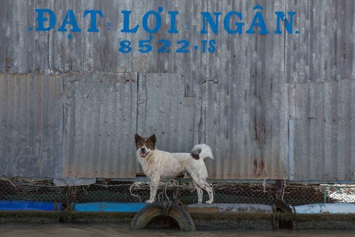 2013 11 29 Mekong Delta_-74