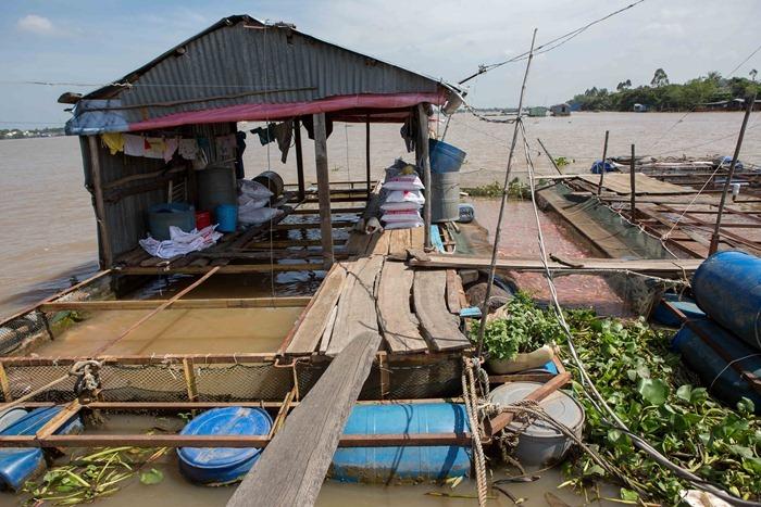 2013 11 29 Mekong Delta_-82