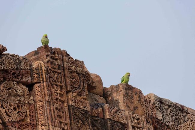 2013 12 23 Qutab Minar_-57-2