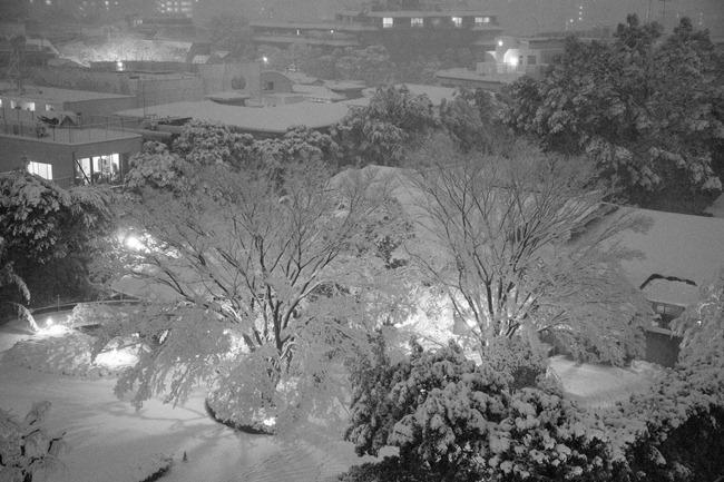 2014 02 14 Tokyo snow_-5