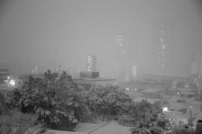 2014 02 14 Tokyo snow_-8