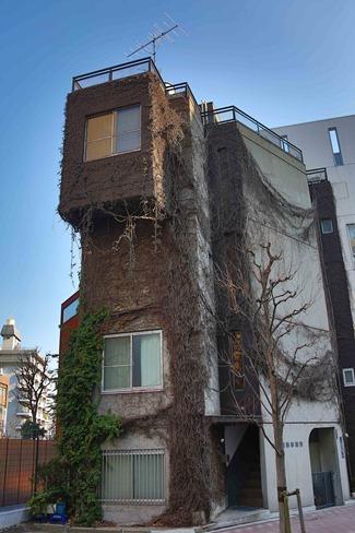 2014 02 23 Tokyo_-16