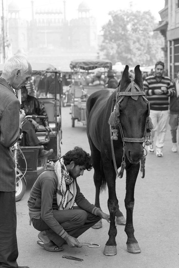 2013 12 24 Old Delhi-83-2