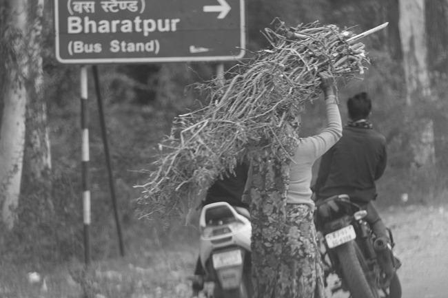 2013 12 27 Agra to Jaipur_-34