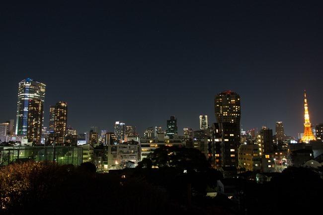 2014 01 26 Tokyo_-10
