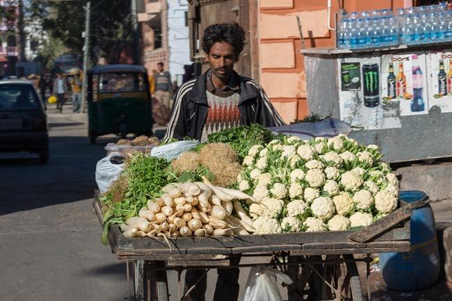 2013 12 29 Jaipur _-10