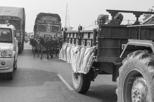 2013 12 30 drive to Delhi-20