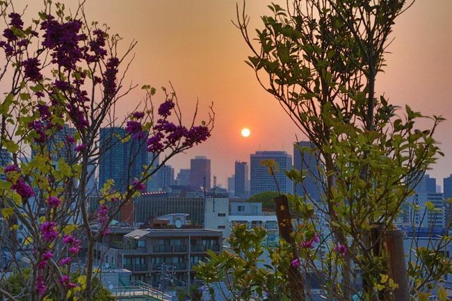 2014 04 17 Tokyo sunrise_-4