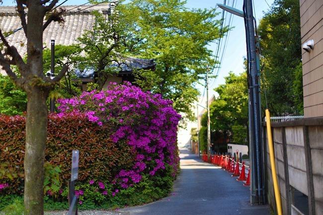 2014 05 02 Minato_-27
