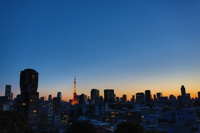 2014 01 27 Tokyo skyline_-2