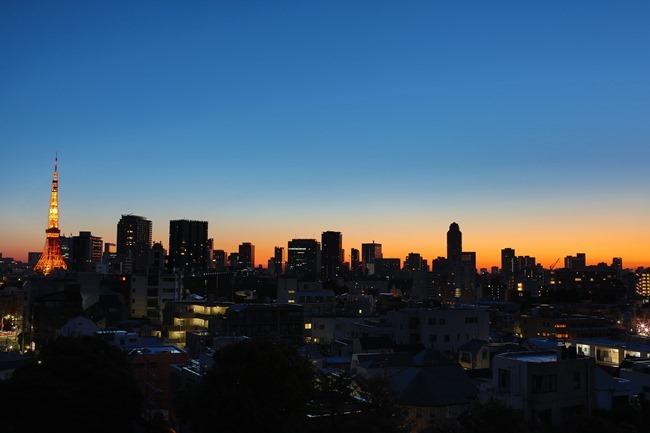 2014 01 31 Tokyo skyline_-2-2