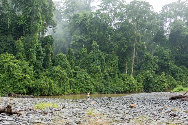 2014 07 07 Borneo _-65